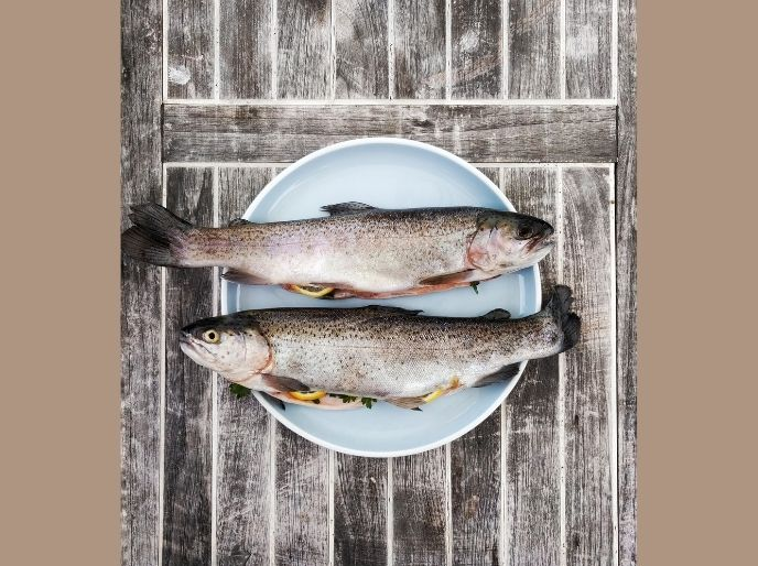 trout on a plate